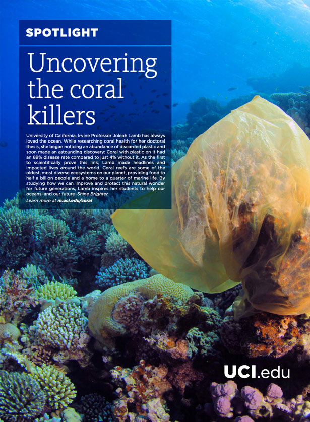 Uncovering the coral killers